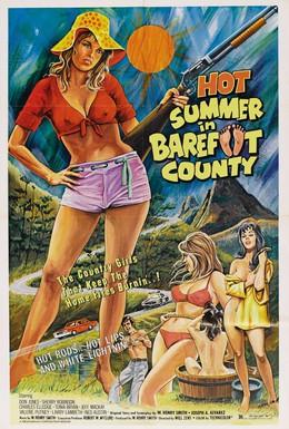 Постер фильма Жаркое лето в округе Бэрфут (1974)