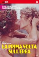 Любовь под вязами (1975)
