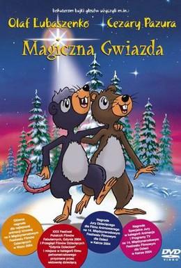 Постер фильма Волшебная звезда (2003)