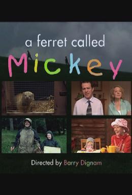 Постер фильма Хорек по имени Микки (2003)