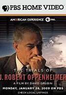 Осуждение Роберта Оппенгеймера (2008)