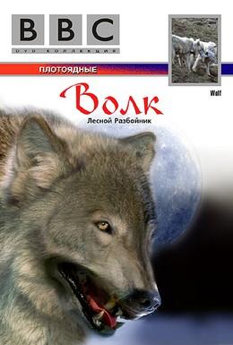Постер фильма BBC: Волк (1997)