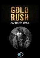 Discovery: Золотой путь Паркера Шнабеля (2017)