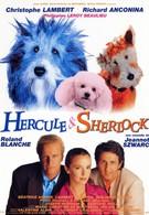 Эркюль и Шерлок против мафии (1996)