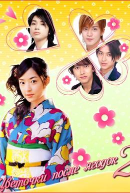 Постер фильма Цветочки после ягодок 2 (2007)