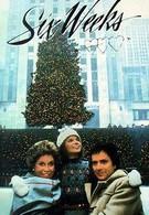 Шесть недель (1982)