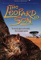 Сын леопарда (1996)