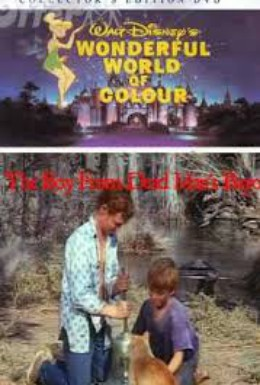 Постер фильма Мальчишка с залива мёртвых (1971)