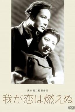 Постер фильма Наша любовь не погаснет (1949)