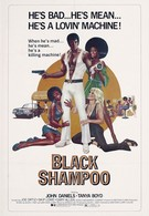Чёрный шампунь (1976)