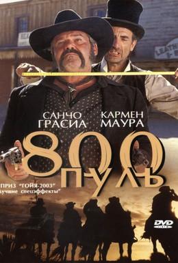 Постер фильма 800 пуль (2002)