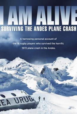 Постер фильма Остаться в живых. Чудо в Андах (2010)