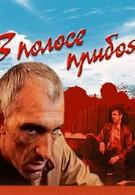 В полосе прибоя (1990)