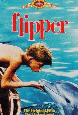 Постер фильма Флиппер (1963)