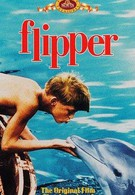 Флиппер (1963)
