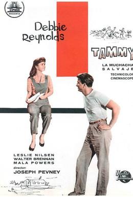 Постер фильма Тэмми и холостяк (1957)