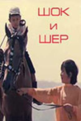 Постер фильма Шок и Шер (1971)