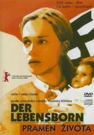 Весна жизни (2000)