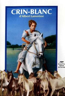 Постер фильма Белая грива: Дикая лошадь (1953)
