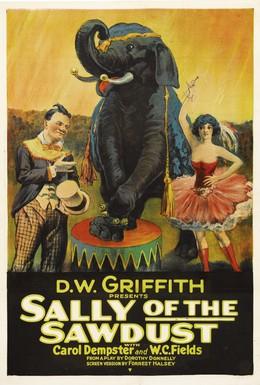 Постер фильма Салли из опилок (1925)