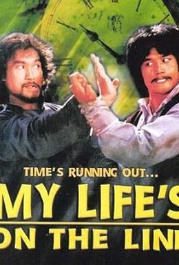 Постер фильма Моя жизнь на грани (1978)