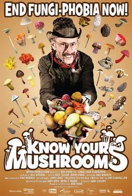 Постер фильма Узнай всё о грибах (2008)