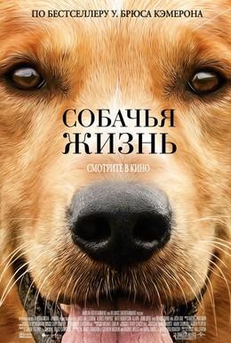 Постер фильма Собачья жизнь (2017)