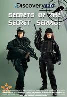 Тайны секретной службы (2009)