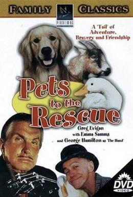 Постер фильма Одни дома (2002)