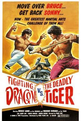 Постер фильма Дерущийся дракон (1975)
