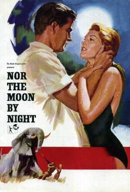 Постер фильма Под африканским небом (1958)