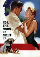 Под африканским небом (1958)