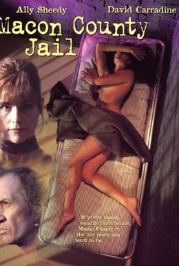 Постер фильма Тюрьма округа Мэкон (1997)