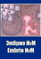 Эмбрио №М (1971)
