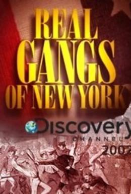 Постер фильма Discovery. Настоящие банды Нью-Йорка (2002)