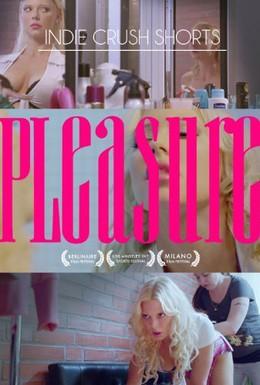 Постер фильма Удовольствие (2013)