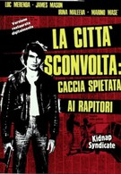 Шок в городе: Безжалостная охота на похитителей (1975)