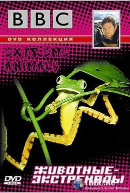 Постер фильма BBC: Животные-экстремалы (2002)