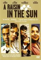 Изюм на солнце (2008)