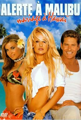 Постер фильма Гавайская свадьба (2003)
