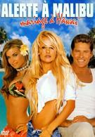 Гавайская свадьба (2003)