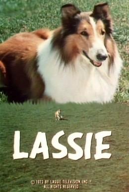 Постер фильма Лэсси (1971)