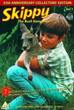 Постер фильма Скиппи (1968)