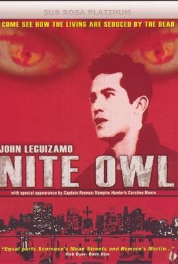 Постер фильма Ночная сова (1993)
