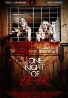 Одна ночь страха (2016)