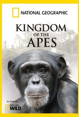 Постер фильма Nat Geo Wild: Королевство обезьян: Брат против брата (2014)