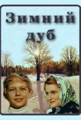 Постер фильма Зимний дуб (1963)
