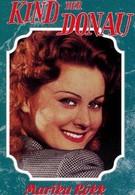 Дитя Дуная (1950)