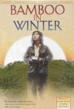 Постер фильма Зимний бамбук (1991)