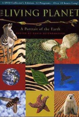 Постер фильма BBC: Живая планета (1984)